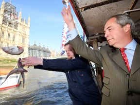 Nigel Farage throwing a dead fish into the Thames in a Brexit protest for Fishing for Leave