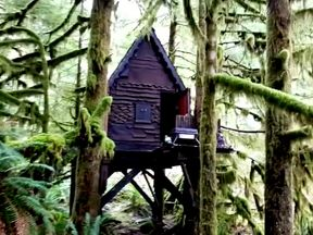 The 'gingerbread treehouse' in Snoqualmie forest. Pic: FBI