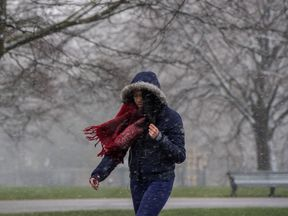 LONDON, ENGLAND - MARCH 17: A woman walks through Kensington Gardens, Hyde Park as snow falls during a weather front that has been dubbed the mini beast from the east on March 17, 2018 in London, England. The Met Office has issued amber weather warnings for the South East of England and the Midlands as cold weather blows in from the east bringing snow, ice and temporary blizzard conditions. (Photo by Chris J Ratcliffe/Getty Images)
