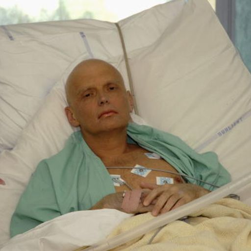 How did the poison used to kill Alexander Litvinenko get to the UK?