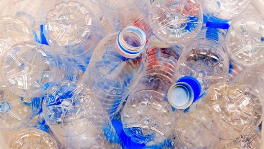 Mr Hammond said single-use plastics were a 'scourge to our environment'