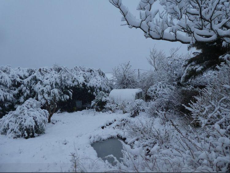 Snow in Snowdonia. Pic: Juliet Greenwood