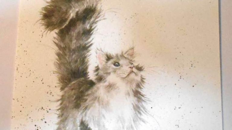 Animals tend to feature in the cards sent to the woman - usually cats.  Police have released pictures of some of the cards