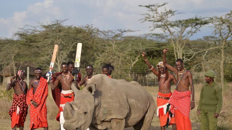 Maasai warriors pose with Sudan, the only male of the last three northern white rhino sub-species on the planet