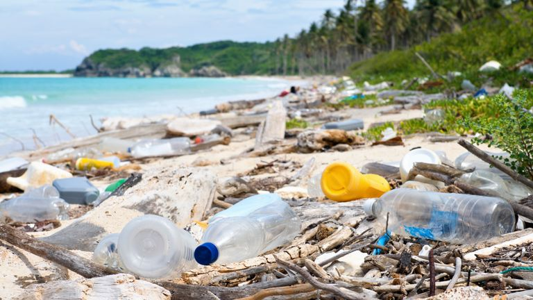 Marine litter is a major problem across the world