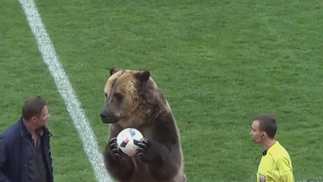 "Footage of a bear performing in front of fans before a Russian league match has been condemned as ""shocking and inhumane"" by animal welfare groups.
