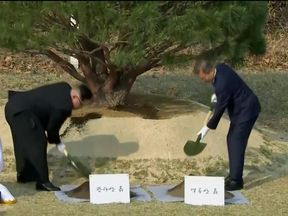 South Korean President Moon Jae-in and North Korean leader Kim Jong Un attend tree planting ceremony