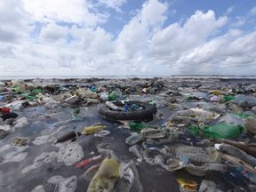 Plastic debris in the sea is a huge environmental problem