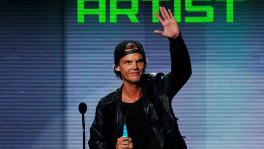 Avicii was named best electronic dance music artist at the American Music Awards in 2013