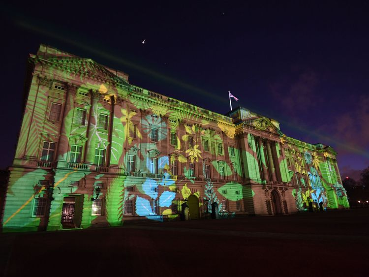 A rainforest design was projected on to the palace as part of the Commonwealth Canopy project