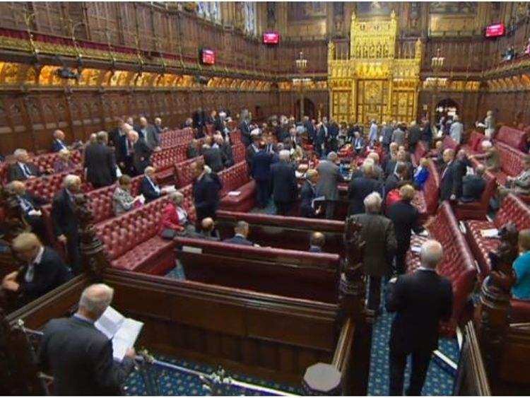 House of Lords inflict three defeats on the Government's Brexit Bill in one night