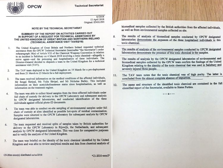 Russian ex-spy case: Chemical weapons watchdog confirms UK findings