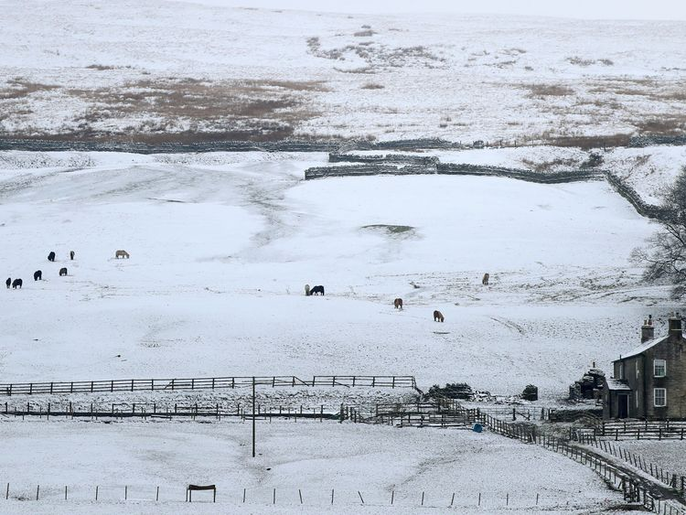 Snow covered fields close to Nenthead, Cumbria