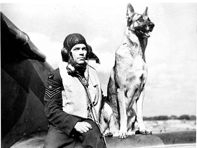 "Collect photo of Wing Commander George Unwin during the Battle of Britain in 1940 with his dog ""Flash"" posing by a Spitfire. Unwin is the only surviving member of 19 Squadron, the Original Spitfire Squadron. PA Photos."