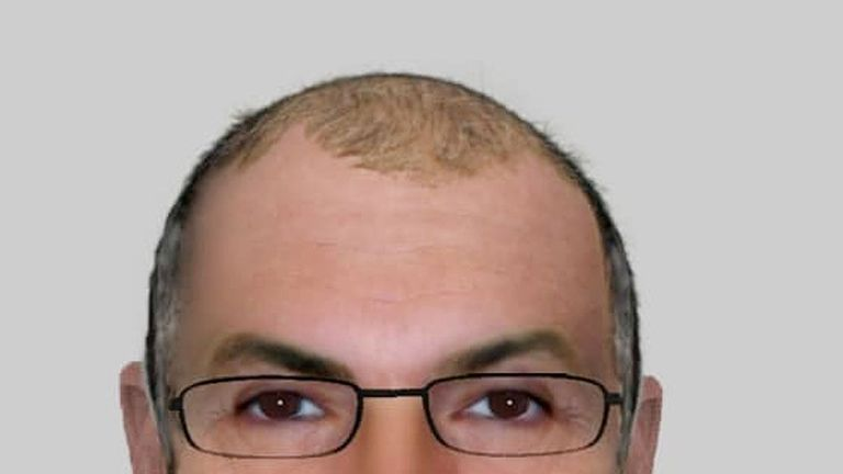 Police have issued this e-fit of the suspected sex attacker