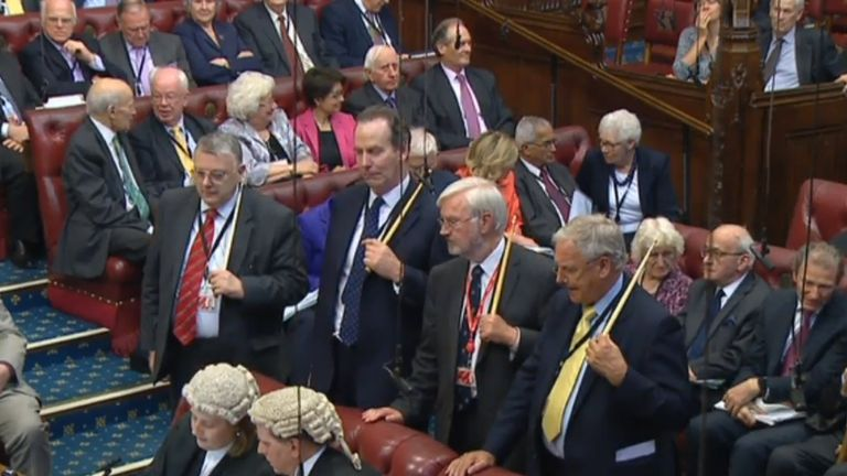 Peers voted in favour of an amendment to the EU Withdrawal Bill