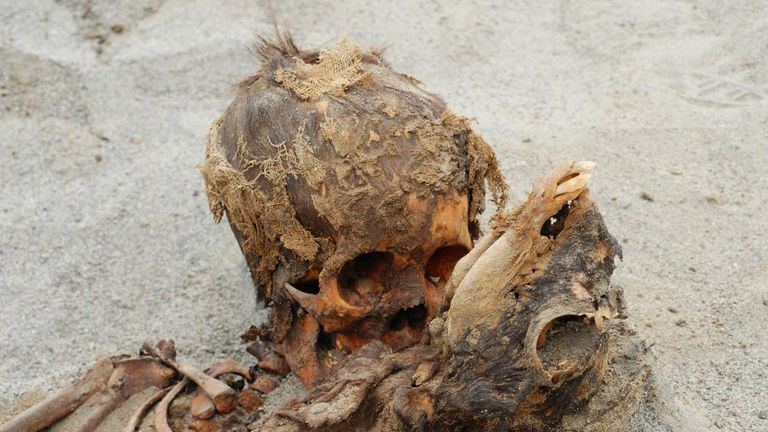 One of the skeletons found in Peru