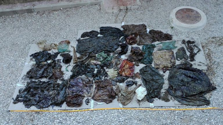 Various pieces of rubbish were found in the whale's digestive system. Pic: @EspNaturalesMur