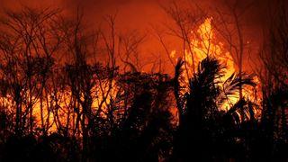 Hannah Thomas-Peter witnesses Kilauea's destruction