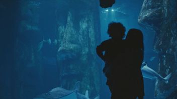 The MI6 advert features a mother and her son watching a shark in an aquariam