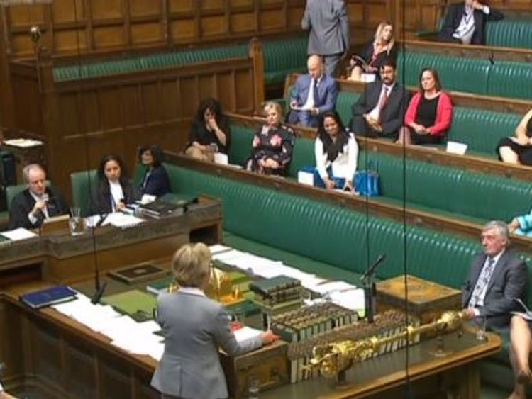 Andrea Leadsom speaks to MPs