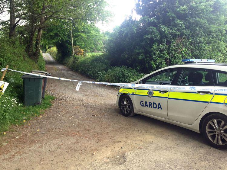 Gardai on Puck's Castle Lane in Rathmichael, Co Dublin