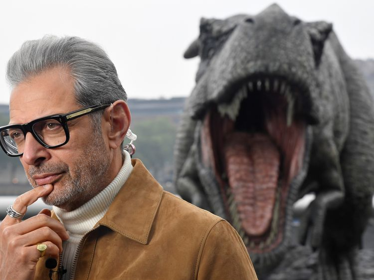Goldblum is currently starring in Jurassic World: Fallen Kingdom, the fifth film in the series