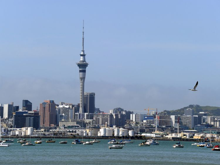 View of the skyline in Auckland, New Zealand