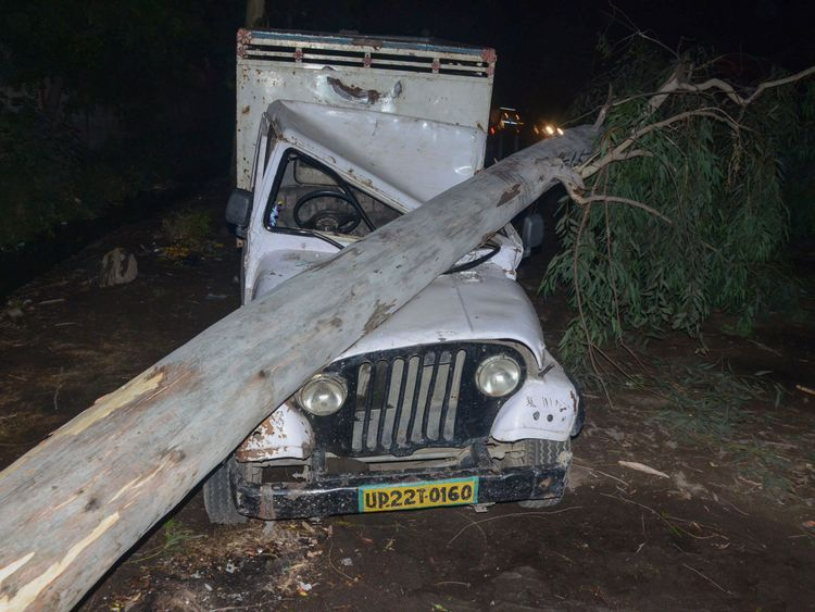 A tree felled by high wind during a storm onto a vehicle in Bareilly in India's northern Uttar Pradesh