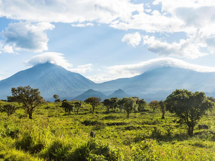 Virunga National Park, UNESCO World Heritage Site, Democratic Republic of the Congo