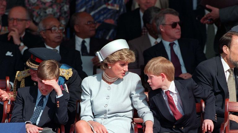 Harry talks to his mother at one of the events she attended in an official capacity in 1995