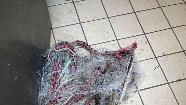 This nylon net and rope was wound around the seal's neck. Pic: RSPCA