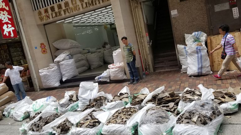 Bags of shark fins from a Singapore Airlines shipment are seen in Hong Kong on 11 May