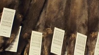 The Labour Party has pledged to ban fur imports to the UK.