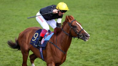 Dettori: I just love racing