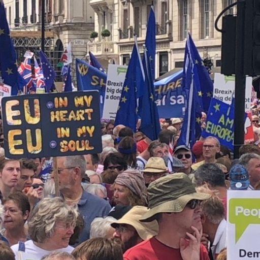 How could a second Brexit referendum happen?