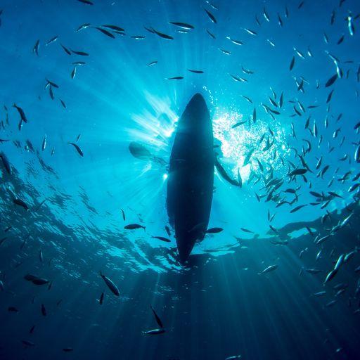 Sky's Ocean Rescue campaign