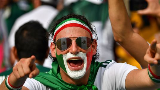 A Mexico fan at the World Cup game against South Korea