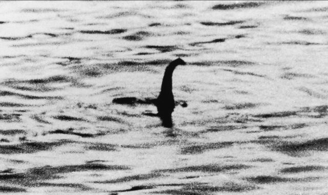 Scientists think they've figure out what the Loch Ness Monster is