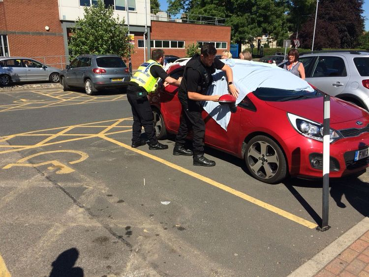 Officer smashed the dogs out of the vehicle. Pic: @NPTYorkcity