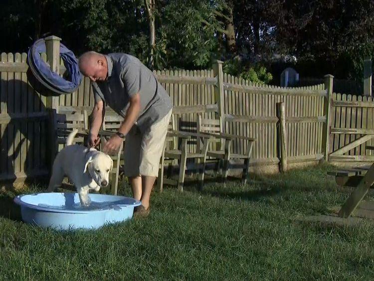Roger Mugford  uses a paddling pool to keep bounce cool