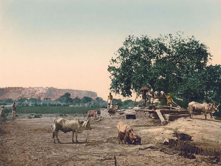 Local people with their cattle at a well in Gwalior Fort near Gwalior, Madhya Pradesh, India, circa 1900. Vintage colour photochrom. (Photo by Photoglob Co./Hulton Archive/Getty Images)