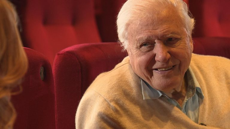 Sir David Attenborough speaks to Sky News' Sarah Jane Mee about plastic waste and climate change