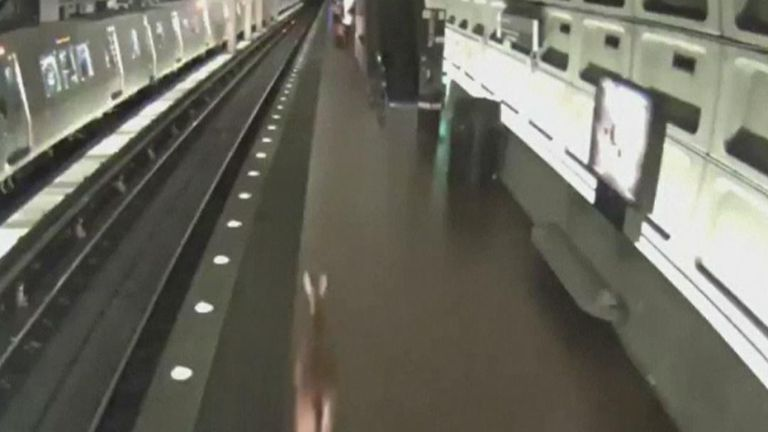 A deer is seen running around the US metro system