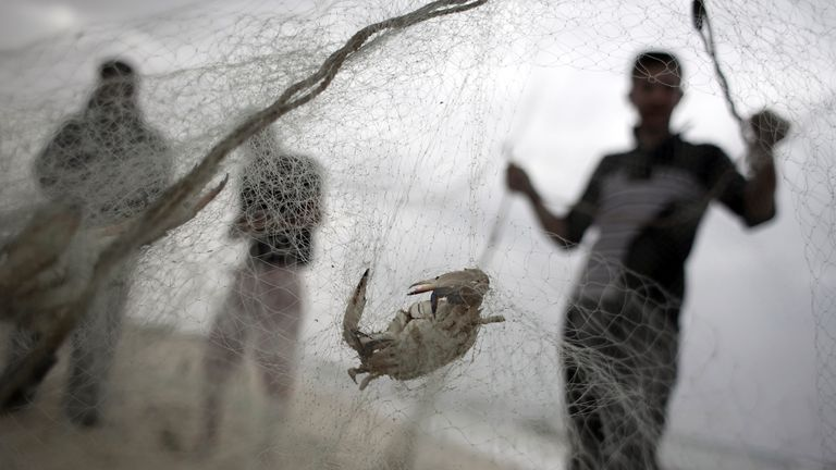 Palestinian fishermen check their nets on the shore of the Mediterranean Sea