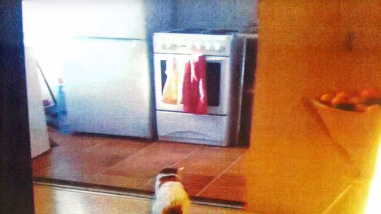 The inquiry was shown the kitchen inside flat 16