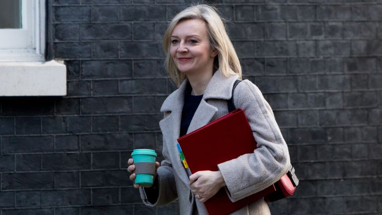 LONDON, ENGLAND - FEBRUARY 27: Chief Secretary to the Treasury, Elizabeth Truss arrives on Downing Street for the weekly cabinet meeting on February 27, 2018 in London, England. (Photo by Eleanor Riley/Getty Images)