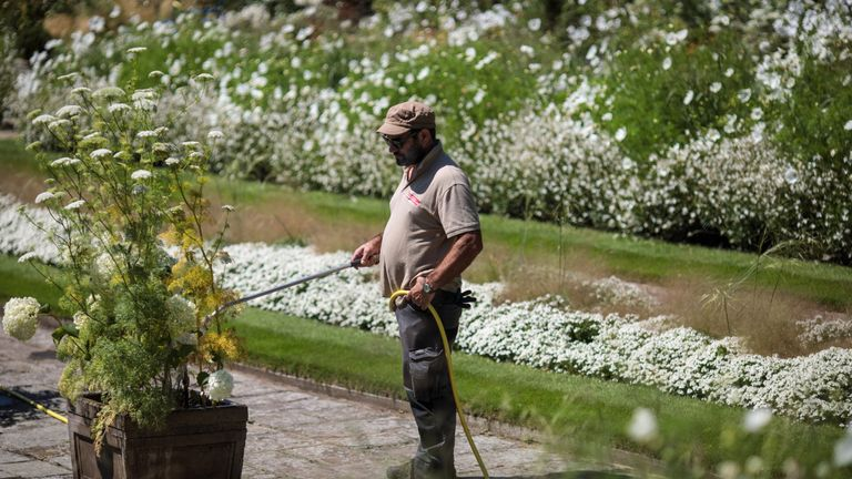 People are being encouraged not to use hoses to water plants