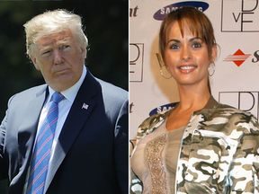 Karen McDougal claimed she had a year-long affair with Donald Trump