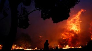 A man looks at the flames as a wildfire burns in the town of Rafina, near Athens, Greece, July 23, 2018.
